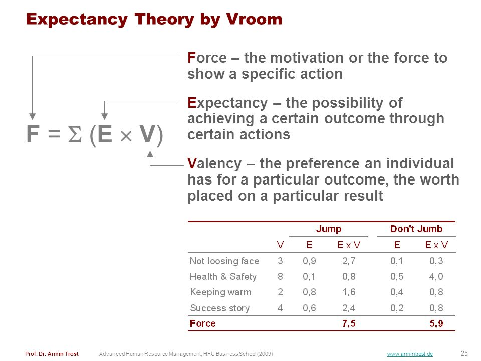 Expectancy Theory by Vroom