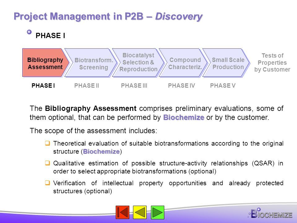 Project Management in P2B – Discovery