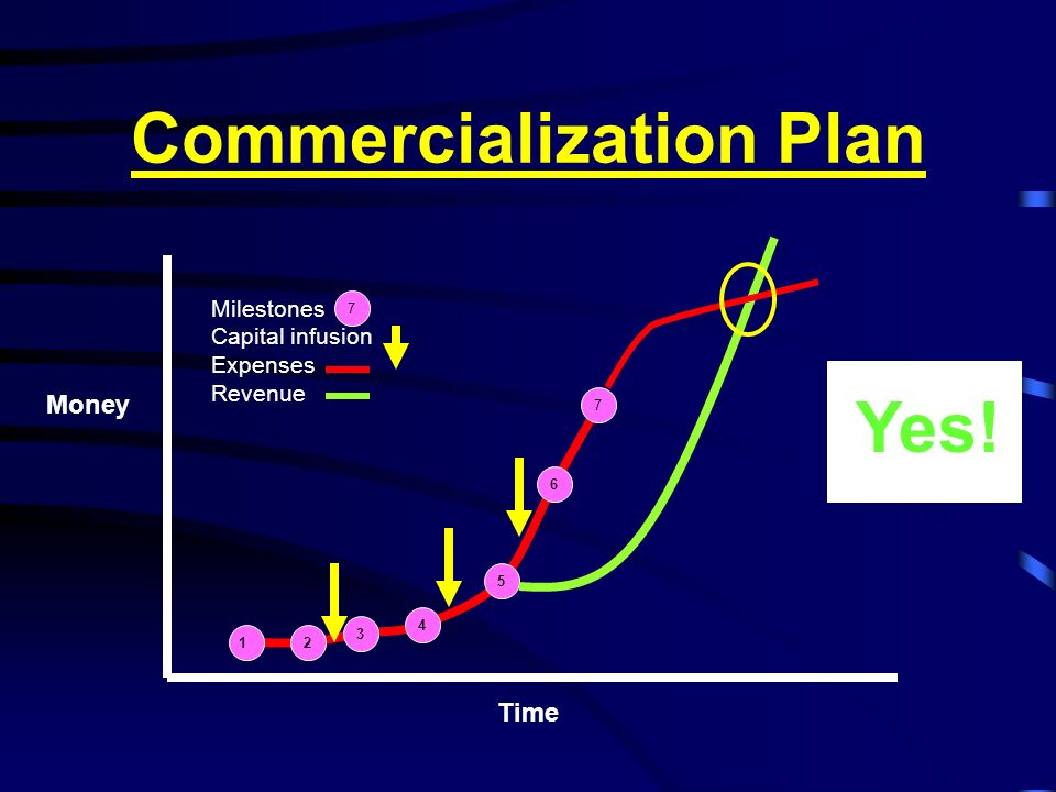 Commercialization Plan
