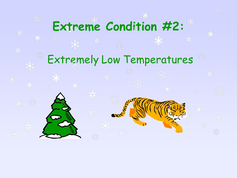 Extremely Low Temperatures