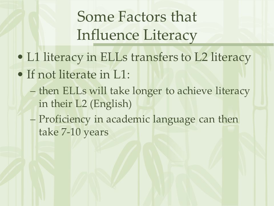 Some Factors that Influence Literacy
