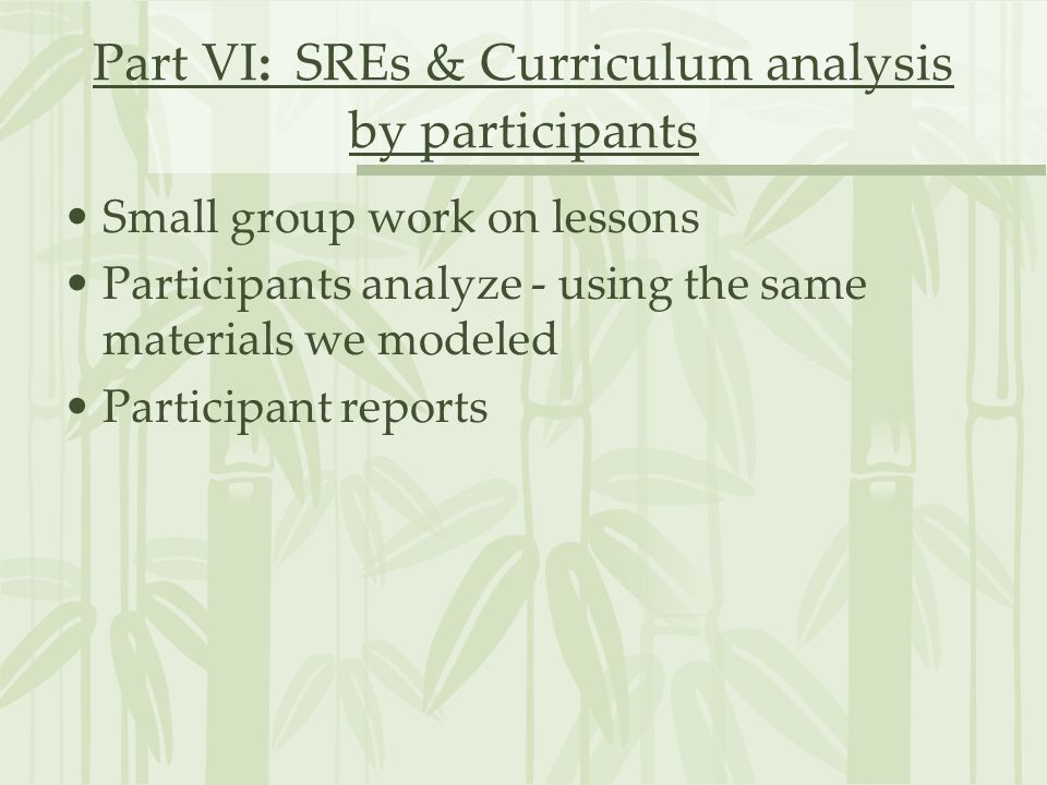 Part VI: SREs & Curriculum analysis by participants
