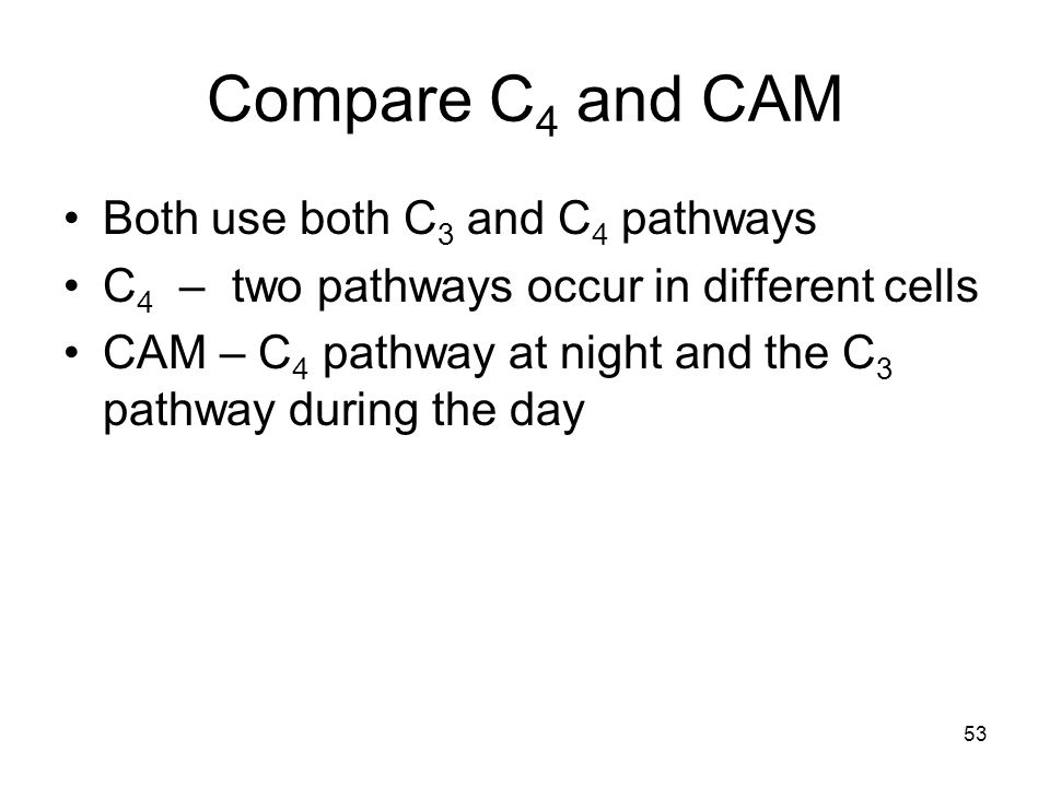 Compare C4 and CAM Both use both C3 and C4 pathways