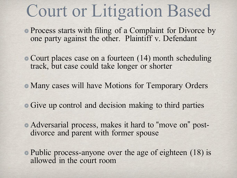 Court or Litigation Based