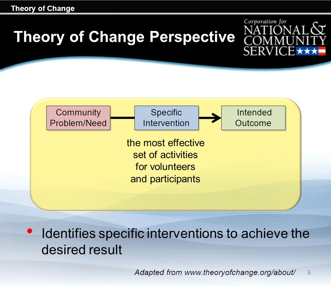 Theory of Change Perspective