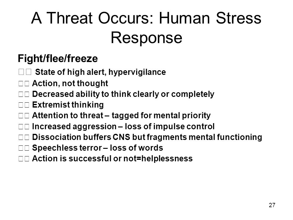 A Threat Occurs: Human Stress Response