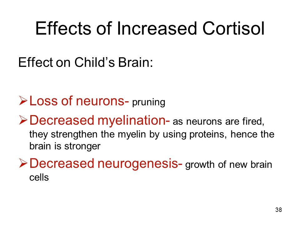 Effects of Increased Cortisol