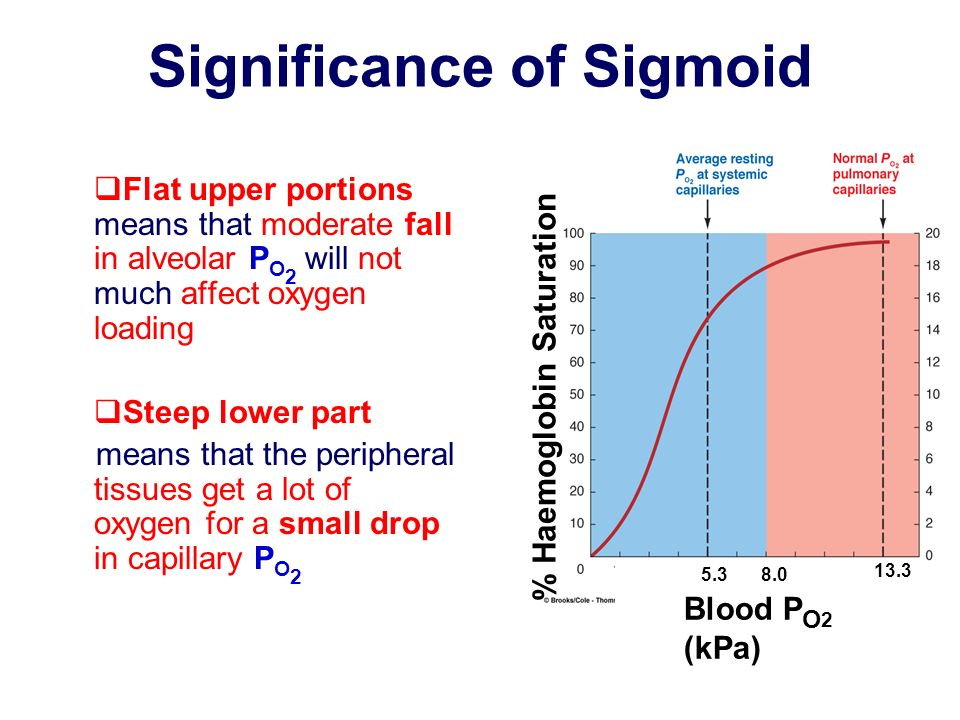 Significance of Sigmoid