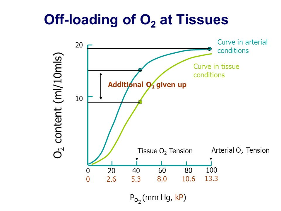 Off-loading of O2 at Tissues