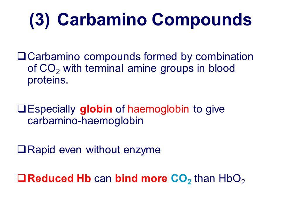 (3) Carbamino Compounds