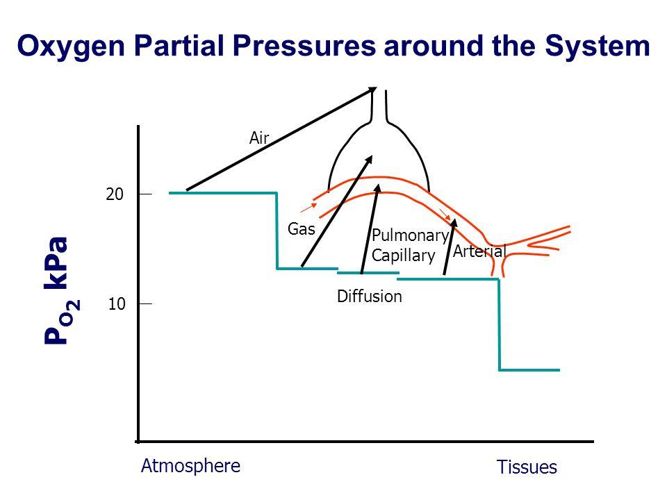 Oxygen Partial Pressures around the System