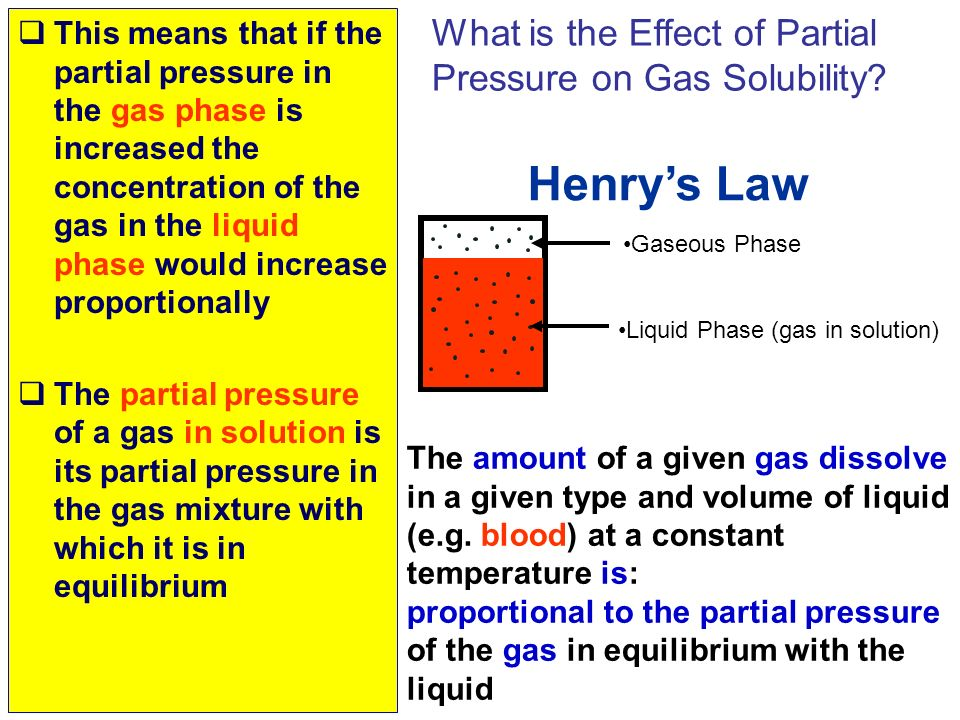 Henry's Law What is the Effect of Partial Pressure on Gas Solubility