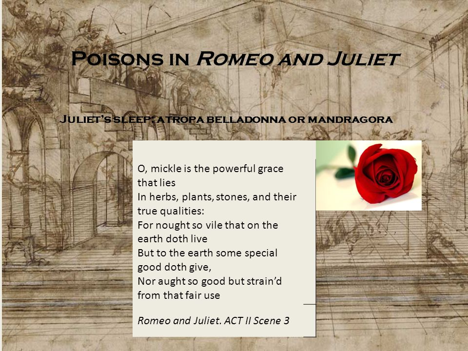 Poisons in Romeo and Juliet