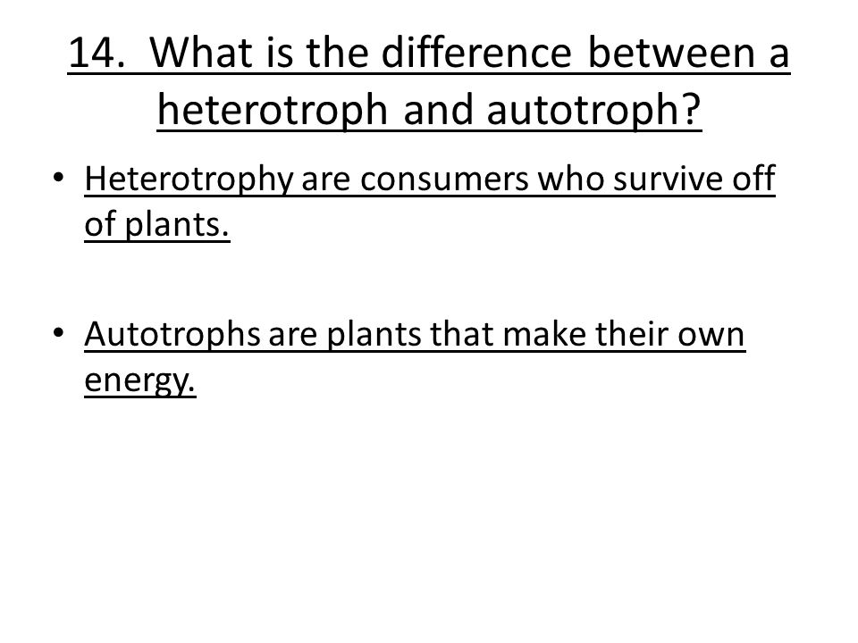 14. What is the difference between a heterotroph and autotroph