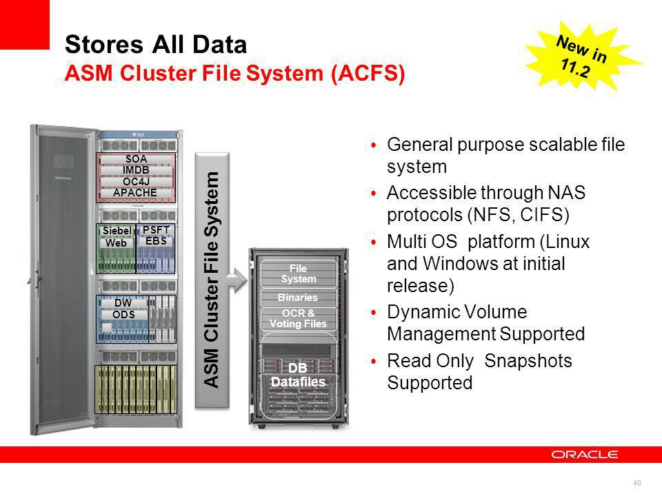 Stores All Data ASM Cluster File System (ACFS)