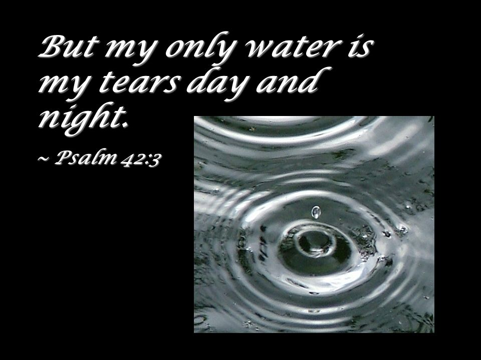 But my only water is my tears day and night.