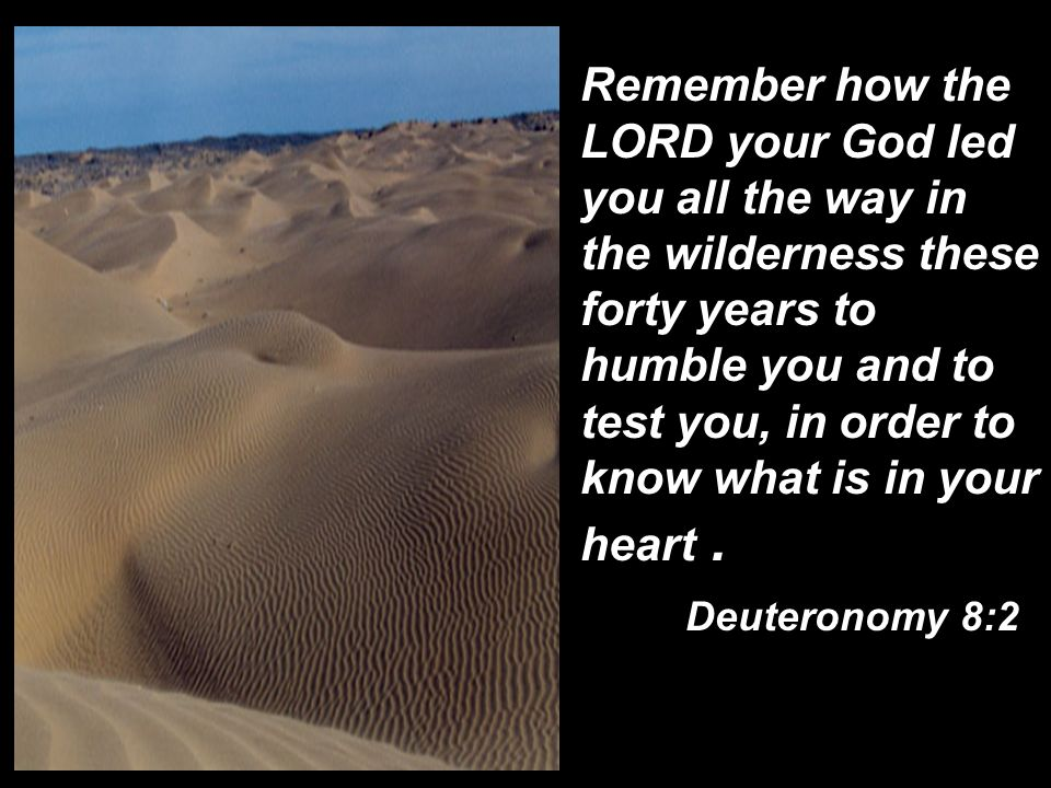 Remember how the LORD your God led you all the way in the wilderness these forty years to humble you and to test you, in order to know what is in your heart .