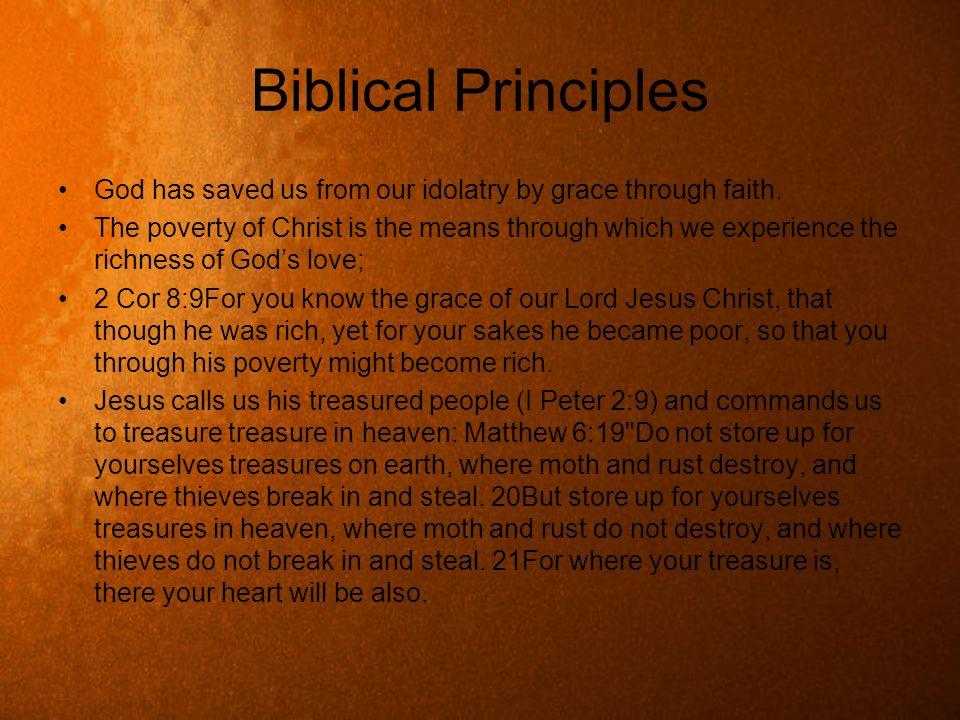 Biblical PrinciplesGod has saved us from our idolatry by grace through faith.