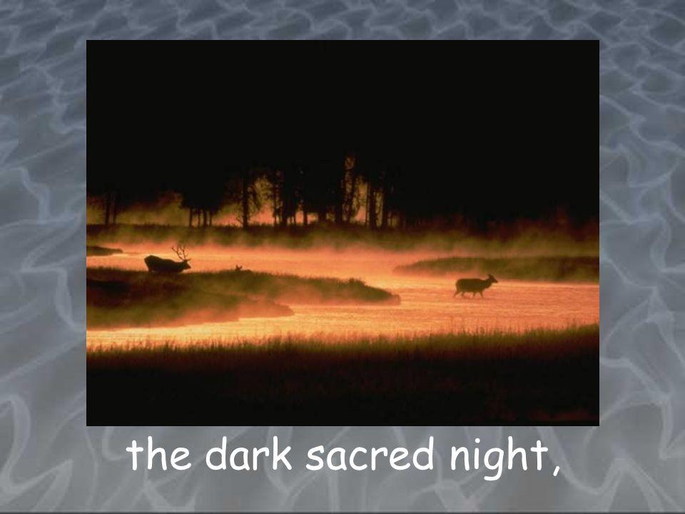 the dark sacred night,