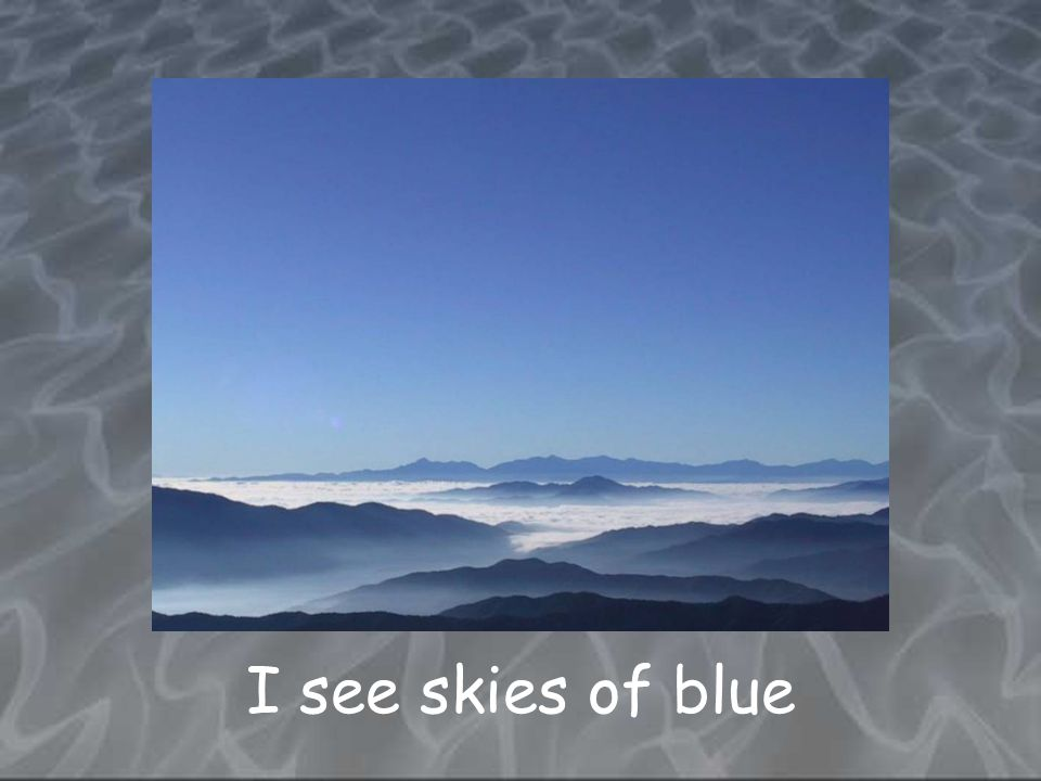 I see skies of blue