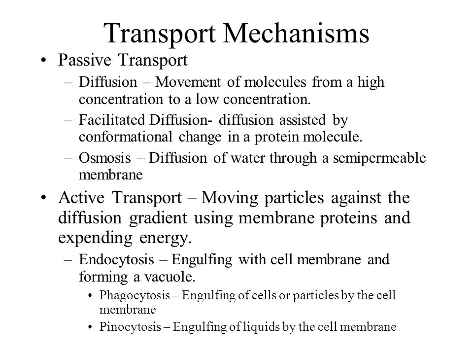 Transport Mechanisms Passive Transport