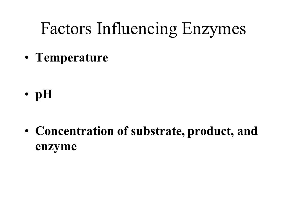 Factors Influencing Enzymes