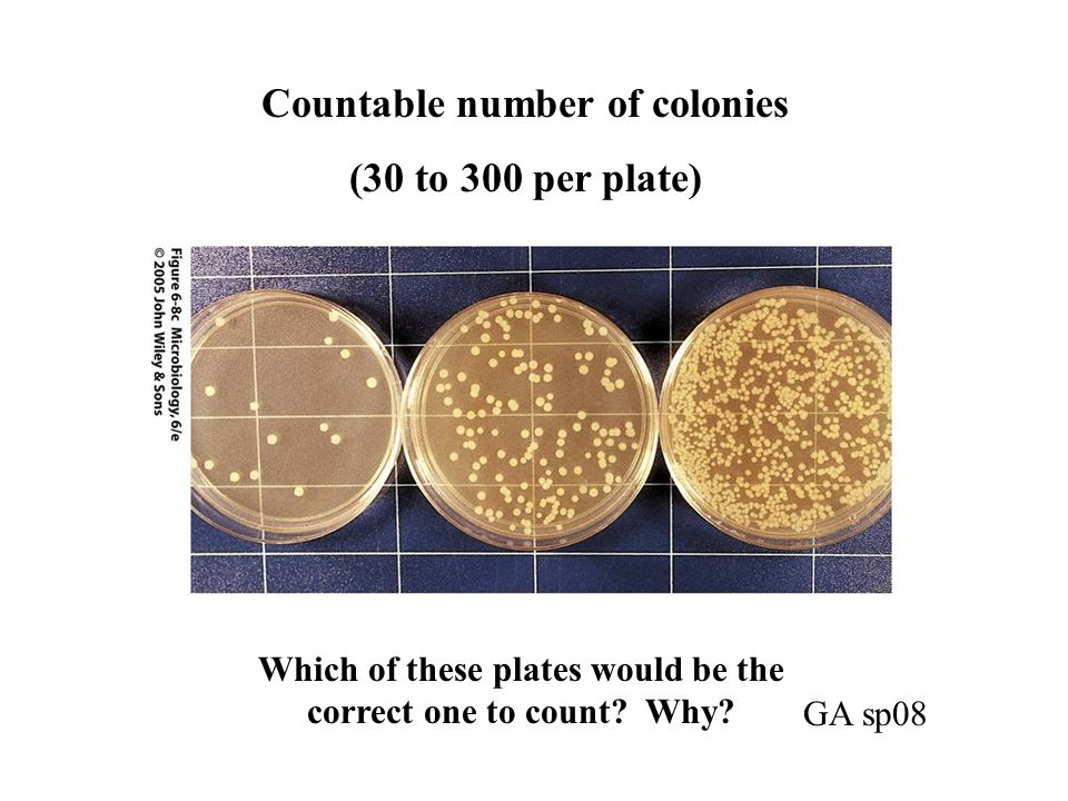 Countable number of colonies (30 to 300 per plate)