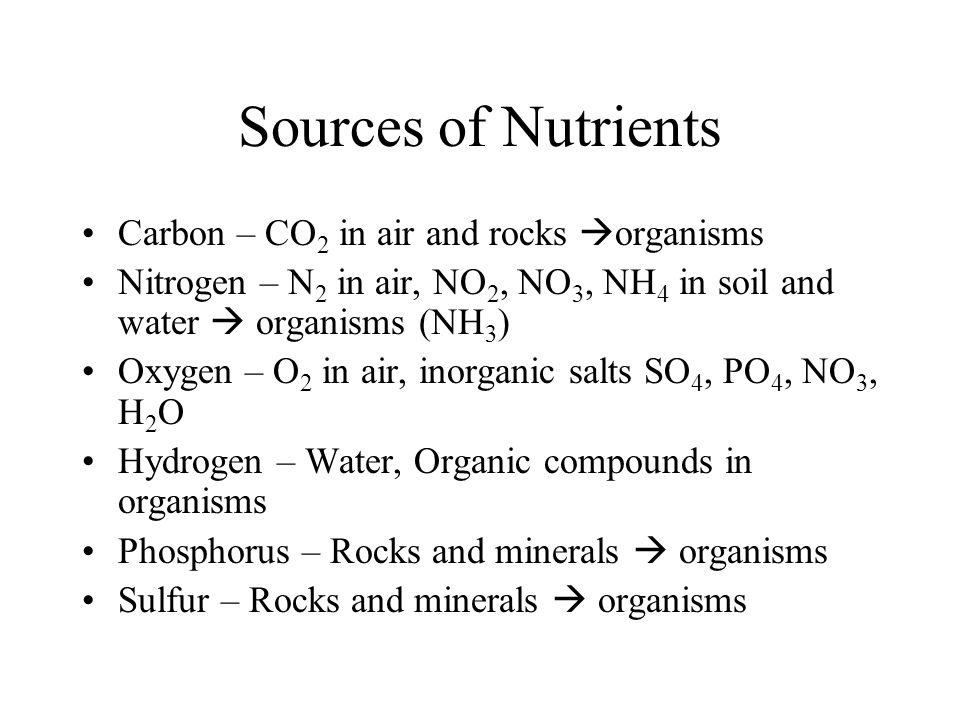Sources of Nutrients Carbon – CO2 in air and rocks organisms