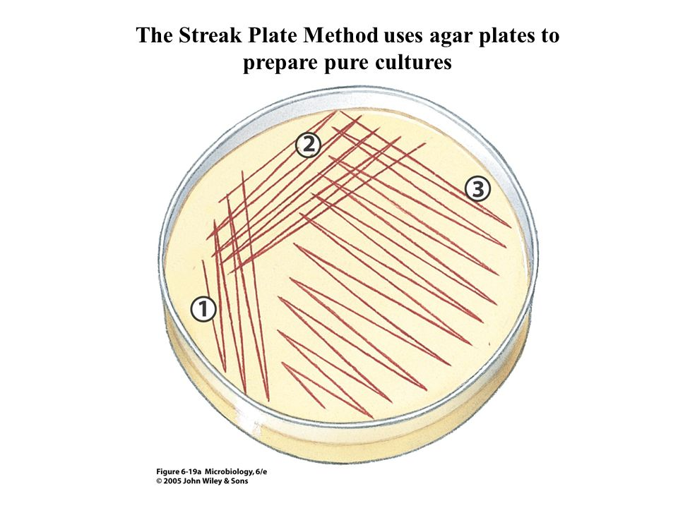The Streak Plate Method uses agar plates to prepare pure cultures