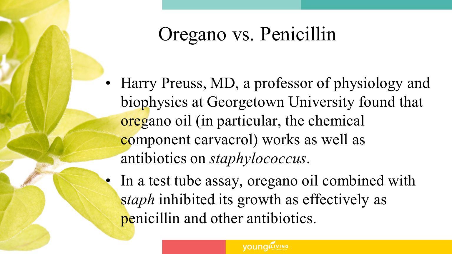 Oregano vs. Penicillin