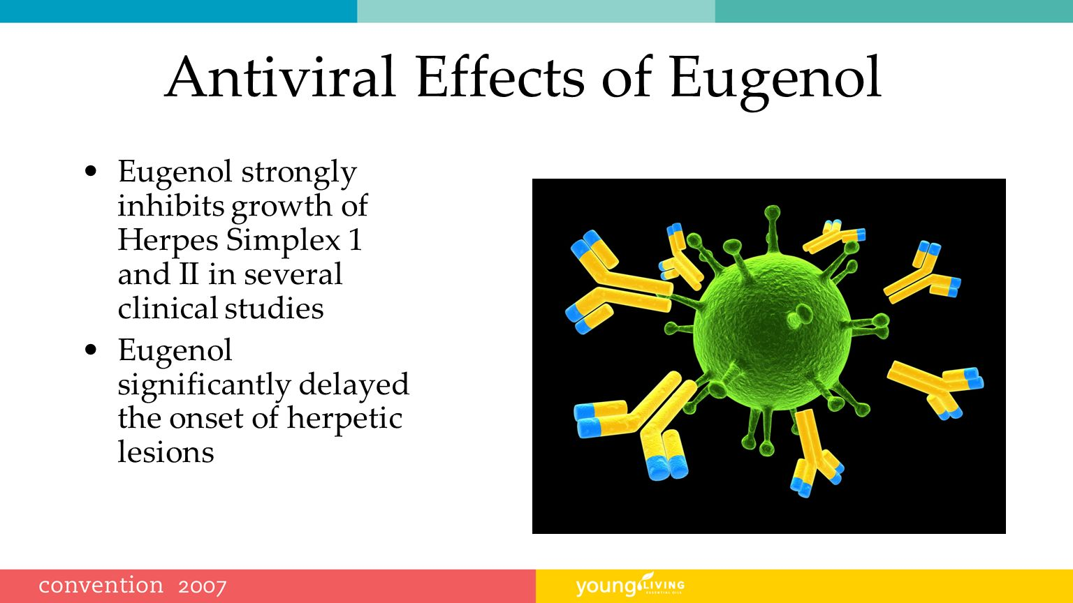 Antiviral Effects of Eugenol
