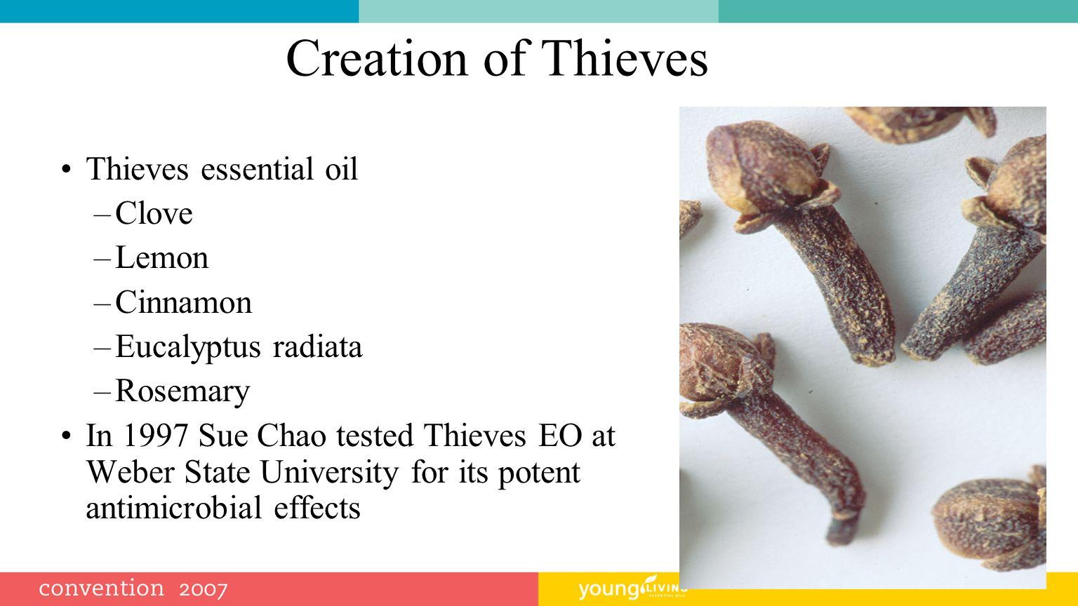 Creation of Thieves Thieves essential oil Clove Lemon Cinnamon