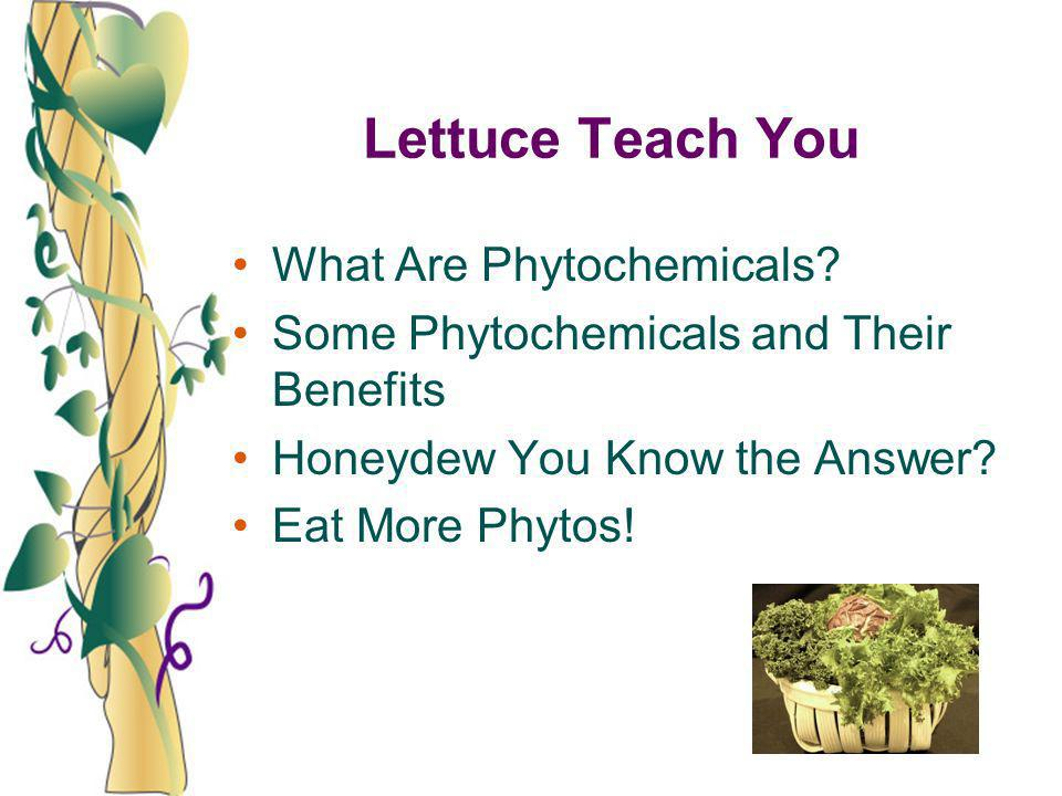Lettuce Teach You What Are Phytochemicals