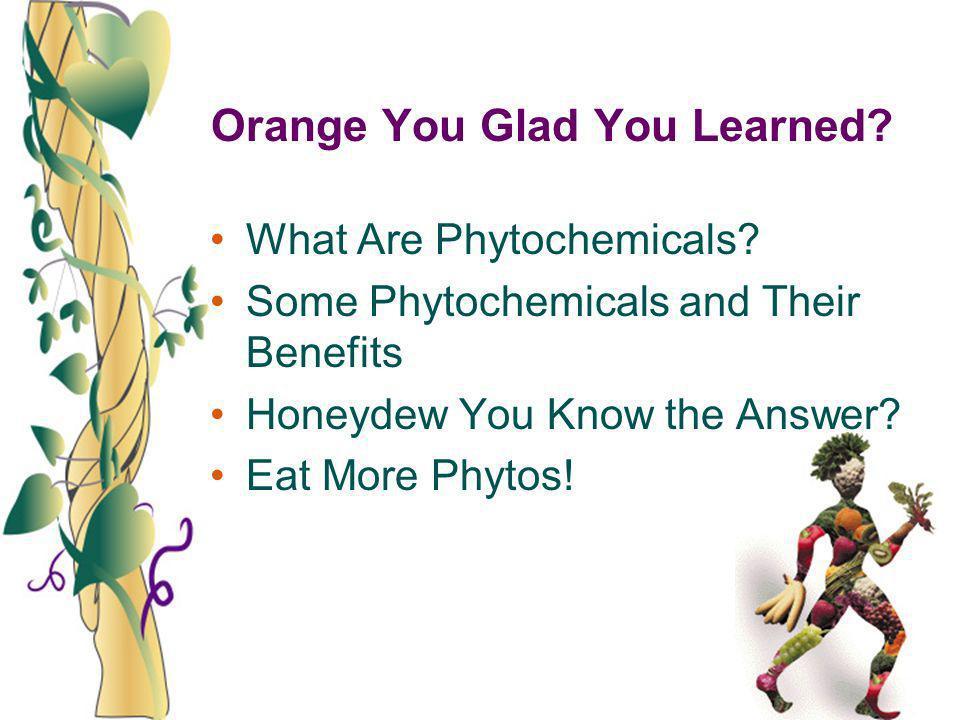 Orange You Glad You Learned