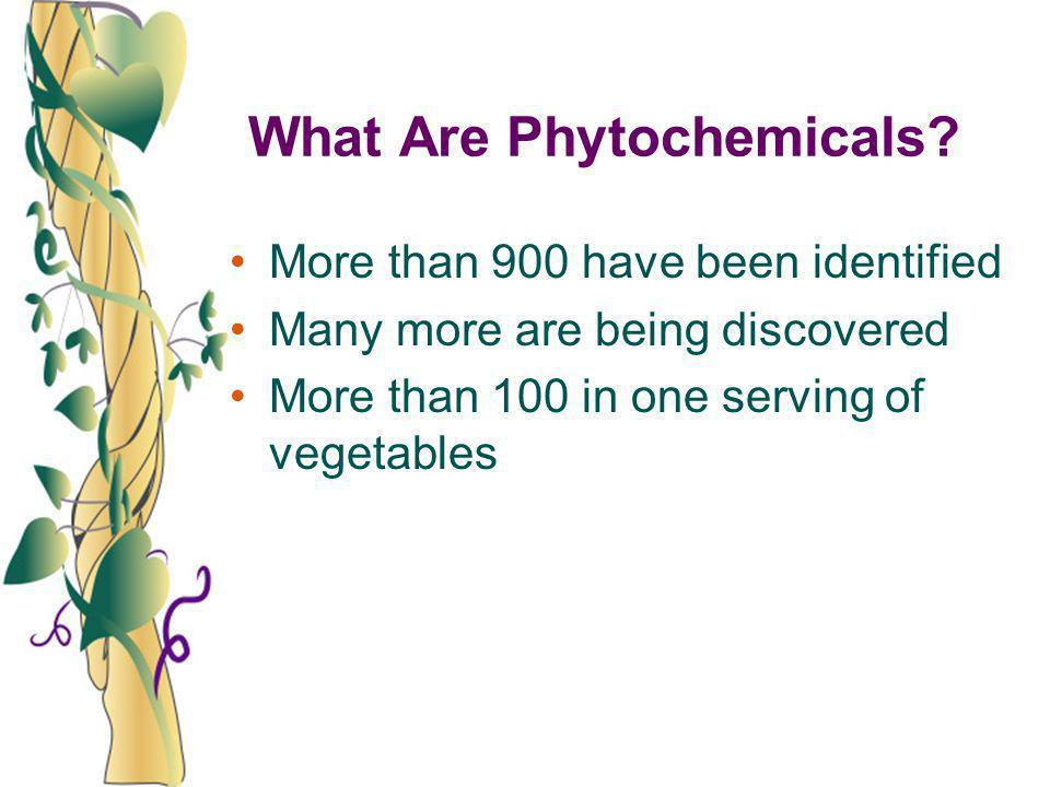 What Are Phytochemicals