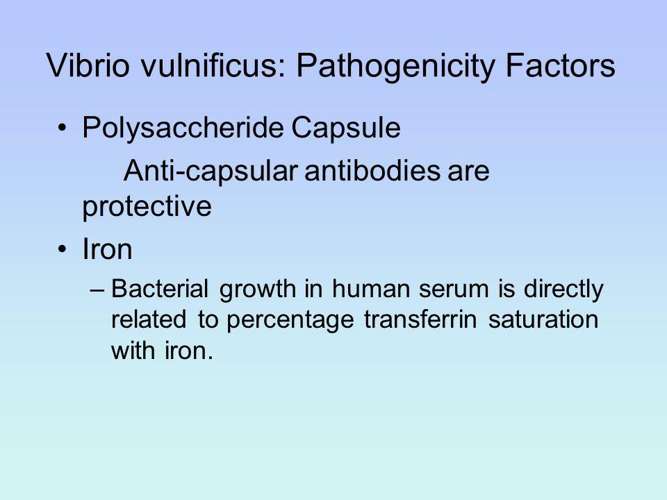 Vibrio vulnificus: Pathogenicity Factors