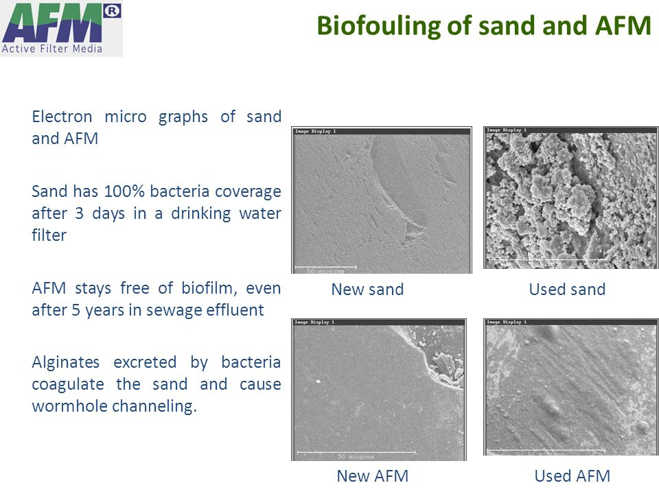 Biofouling of sand and AFM