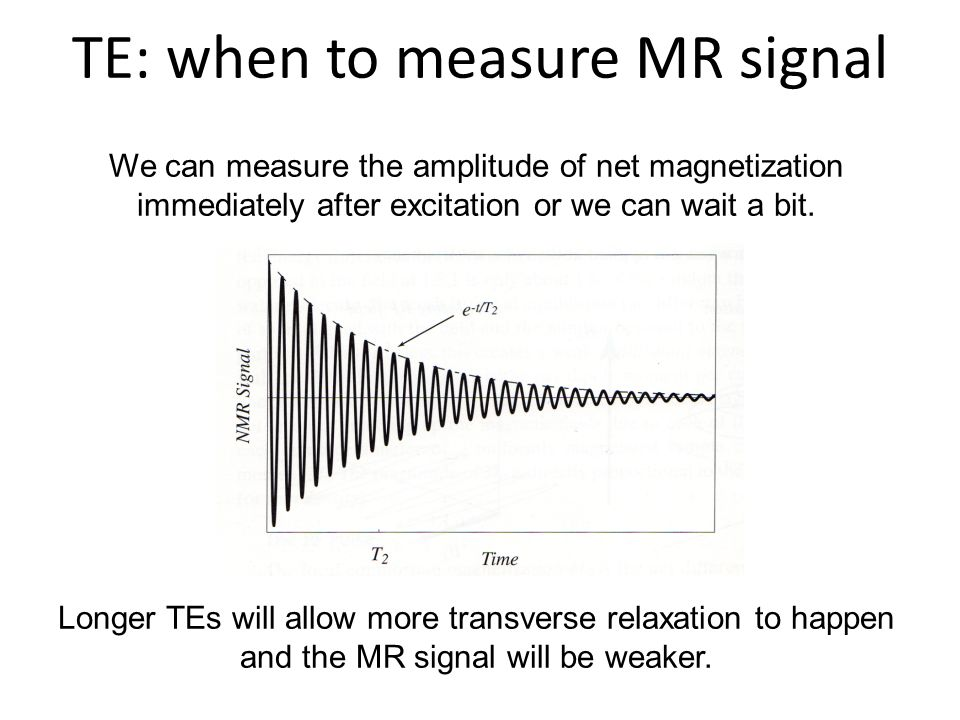 TE: when to measure MR signal
