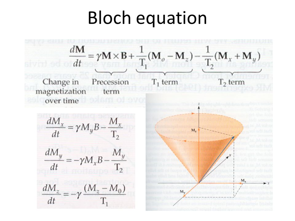 Bloch equation