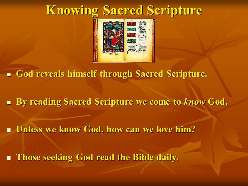 Knowing Sacred Scripture