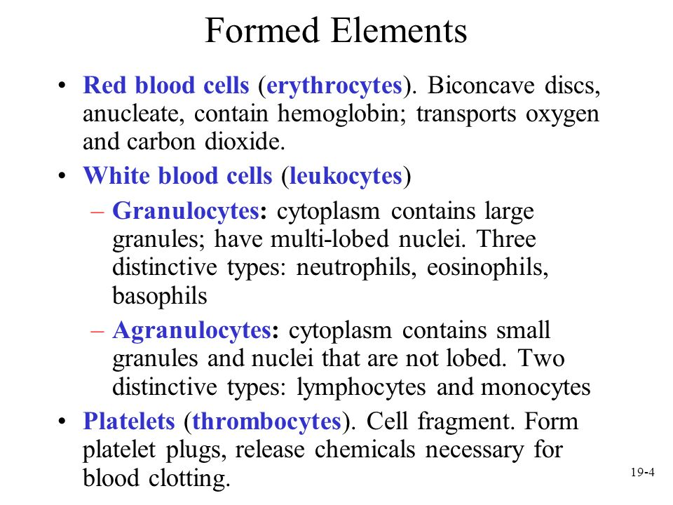 Formed Elements Red blood cells (erythrocytes). Biconcave discs, anucleate, contain hemoglobin; transports oxygen and carbon dioxide.