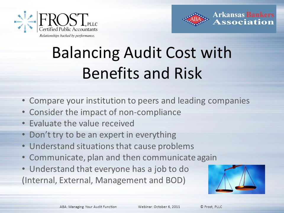 Balancing Audit Cost with Benefits and Risk