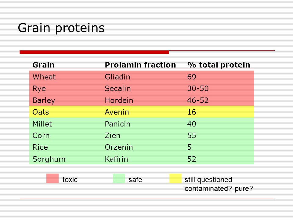 Grain proteins Grain Prolamin fraction % total protein Wheat Gliadin