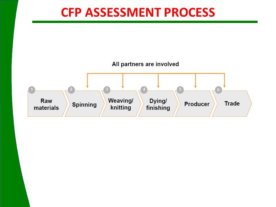 CFP ASSESSMENT PROCESS