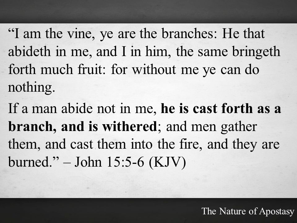 I am the vine, ye are the branches: He that abideth in me, and I in him, the same bringeth forth much fruit: for without me ye can do nothing.
