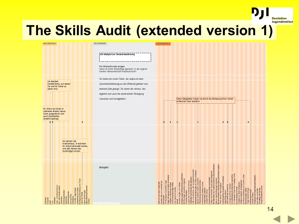 The Skills Audit (extended version 1)