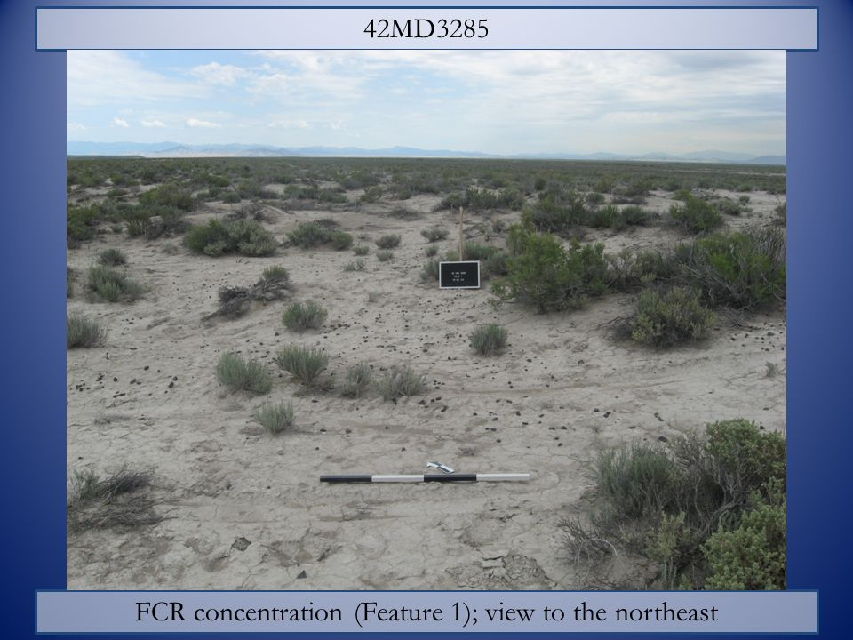 FCR concentration (Feature 1); view to the northeast