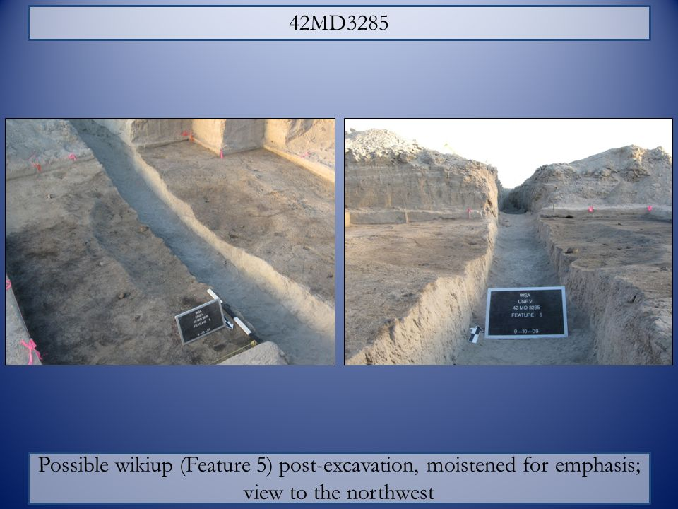 Possible wikiup (Feature 5) post-excavation, moistened for emphasis;