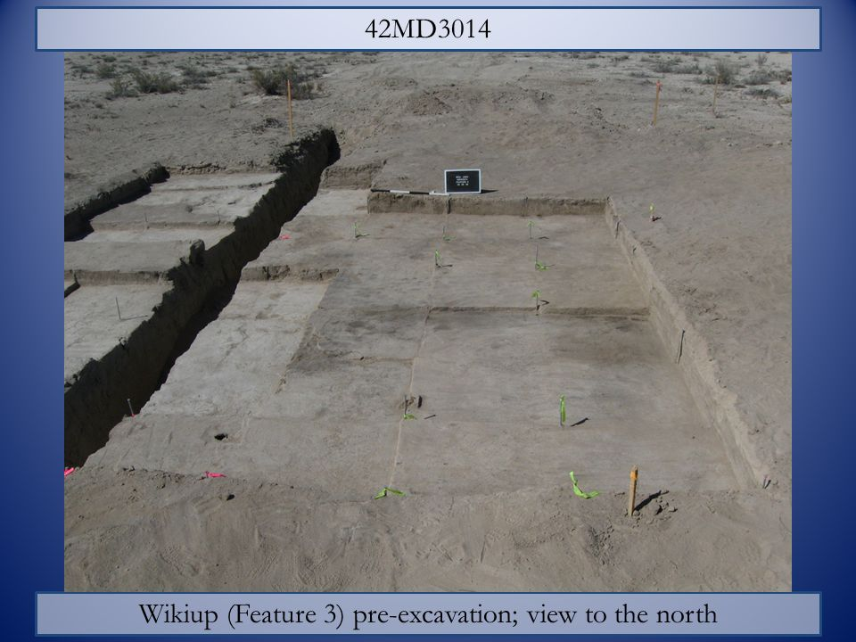 Wikiup (Feature 3) pre-excavation; view to the north