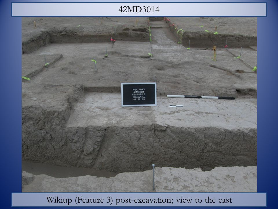 Wikiup (Feature 3) post-excavation; view to the east